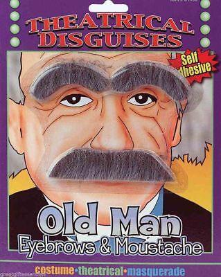 OLD MAN GRAY EYEBROWS & MUSTACHE Albert Einstein Stick On Fake Mad Scientist Gag - Albert Einstein Mustache