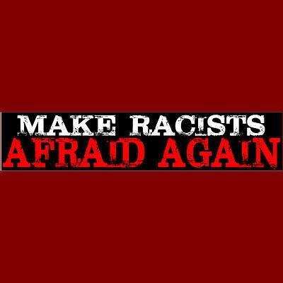 MAKE RACISTS AFRAID AGAIN  Bumper Sticker  Free Shipping (Buy 2 Get 1 -