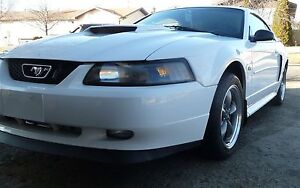 Ford Mustang GT*low kms*