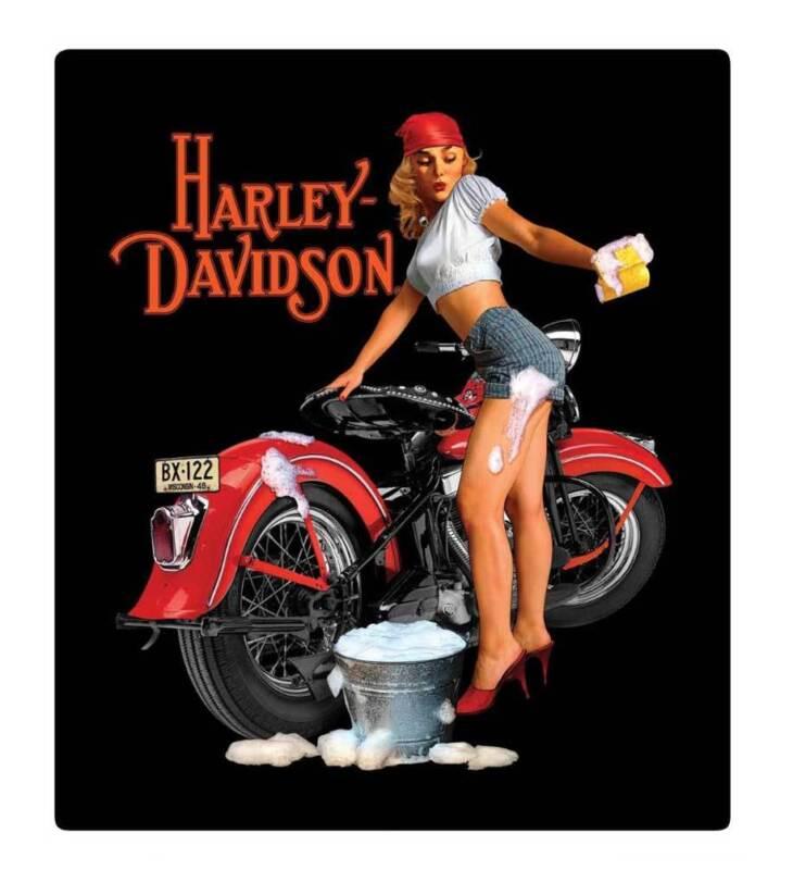 Harley-Davidson Wash Babe Tin Metal Sign, 13 W x 15 H Inch 2010371
