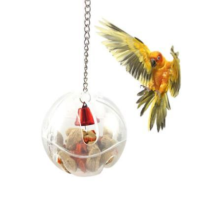 Bird Seed Food Foraging Ball Intelligence Toy for Budgie Parrot Cage Feeder