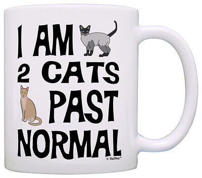 Cat Lover Gifts I Am 2 Cats Past Normal Crazy Cat Lady Gag Coffee Mug Tea Cup Crazy Cat Lady Mug