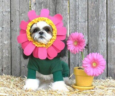 Yellow Halloween Costume (Pet Halloween Costune - Dog Flower Costume in Pink or Yellow)