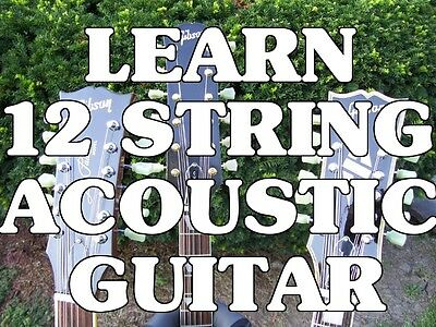 Learn 12 String Acoustic Guitar! Beginner Lessons DVD. on Rummage