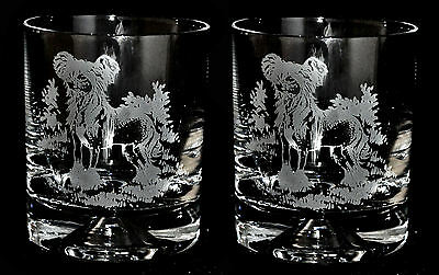 CHINESE CRESTED HAIRLESS *DOG GIFT* Boxed PAIR GLASS WHISKY TUMBLER