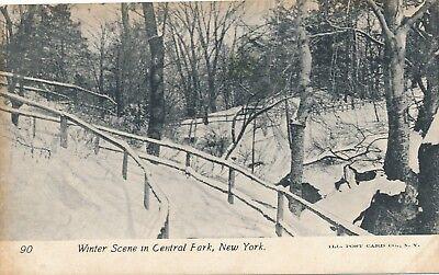 - NEW YORK CITY – Central Park Winter Scene – udb (pre 1908)