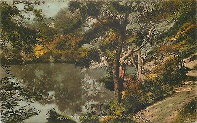 s09574 Waggoners Wells, Hindhead, Surrey, England postcard unposted