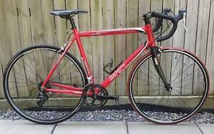 Malven Star Capo Pro Road Bike, Carbon Fork, 16 Shimano Gears