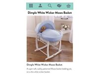 Baby's Mosest Basket