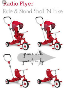 Looking for Ride & Stand Trike