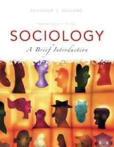 Sociology: A Brief Introduction - Second Edition - over 50% off