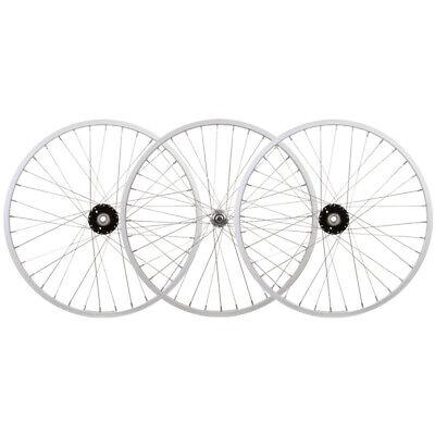 WM Wheel  Front 24x1.75 507x25 Aly Bk 36 Aly Bo 3//8 Bk Ss2.0bk