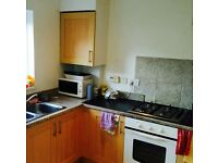 *** Single room, modern flat, garden, close to POOLE QUAY ***