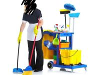 **Domestic cleaner/home help**