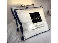 2 Luxury Goosedown Pillows