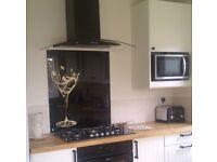 Black kitchen splash back 75x90cm
