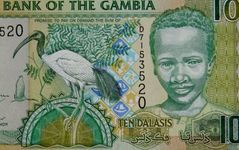 AFRICAN SACRED IBIS on MONEY 2006 GAMBIA 10 DALASI BANKNOTE Authentic Uncirculat