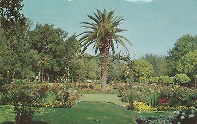 (R)  Sacramento, CA - McKinley Park - Grounds and Gardens
