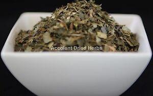 Dried-Herbs-WITCH-HAZEL-Hamamelis-virginiana-50g