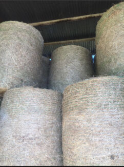 Grassy Hay 4x4 Rounds Rathdowney Ipswich South Preview