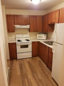 Furnished Two Bedroom Apartment - Everything Included