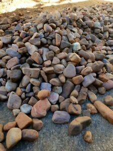 FREE River Pebbles/stones - landscaping