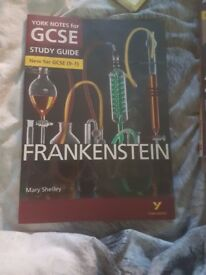 GCSE Frankenstein Revision