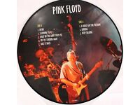 "Pink Floyd The Torino Soundboard Part I LP Record Vinyl 12"" 33 Picture Disc Rare"
