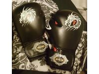 Farabi Muay Thai gloves