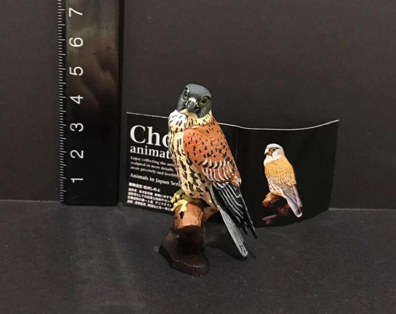 Kaiyodo Animatales Choco q Series 11 Eurasian Kestrel Hawk Raptor Bird A Figure