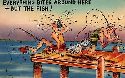 Comic Everything Bites Around Here But The Fish Fishermen Bulldog Postcard