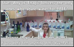 Enagic Kangen Water System - Windsor  Windsor Region Ontario image 4