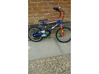 Kids raleigh moonman bike