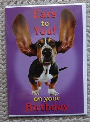 Ears to You! On your Birthday Doggie Greetings Card