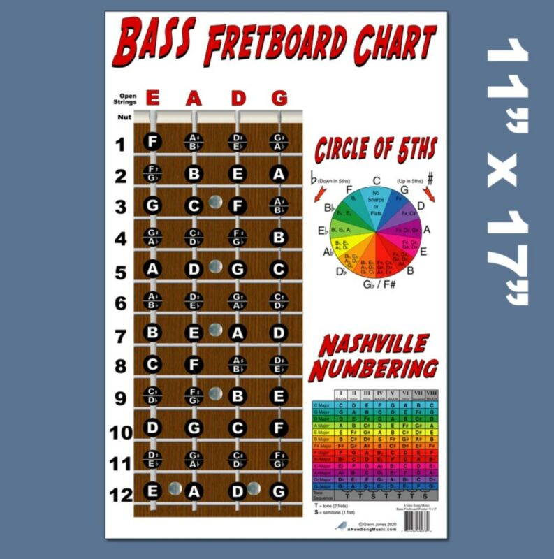 4 String Bass Fretboard Instructional Chart Poster Nashville Numbering Theory