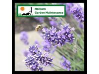Holburn Garden Maintenance is a local and friendly gardening service in the Aberdeen area.