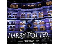 Hurry Potter Play ticket - 28th April