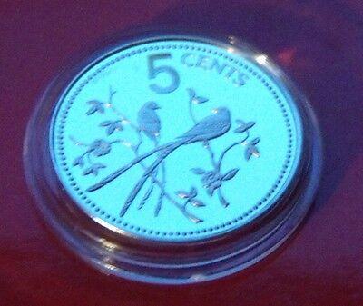 Belize Holder (925 SILVER STERLING  PROOF 1975 BELIZE 5 Cents, Flycatcher Bird! w)