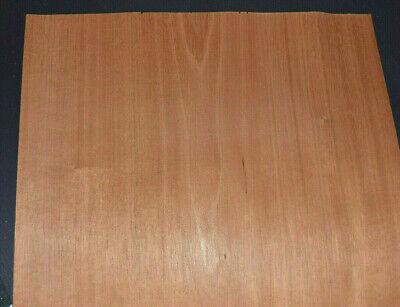 Mahogany Raw Wood Veneer Sheets 14 X 34 Inches 142nd 4554-49