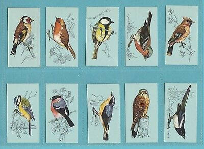 BIRDS  -  TETLEY  TEA  -  RARE  SET  OF  48  BRITISH  BIRDS  CARDS  -  1975