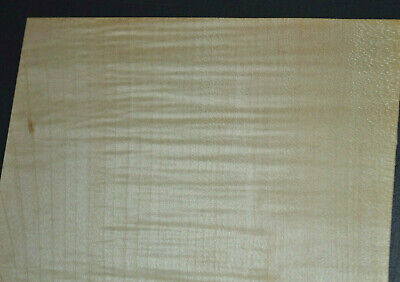 Curly Maple Raw Wood Veneer Sheets 6 X 23 Inches 142nd   6772-44