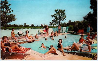 SANTEE, SC South Carolina  GAMECOCK MOTEL POOL BABES!  c1950s Roadside Postcard - South Carolina Pool