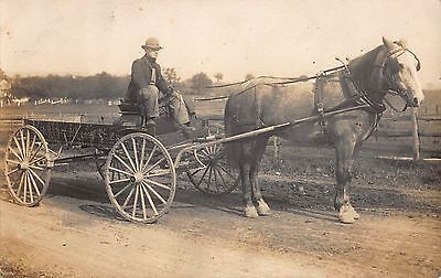 Real Photo Postcard Horse Pulled Work Wagon Hoffman Roofing Company~107920