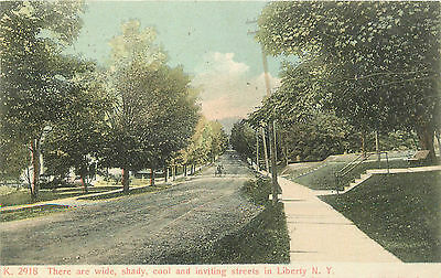 Liberty Ny  Wide  Shady  Cool Residential Street  1911 P C