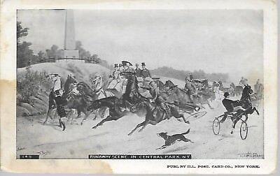 - Runaway Scene in Central Park New York NY NYC Vintage Postcard