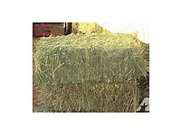 Good quality small square bales of hay for sale