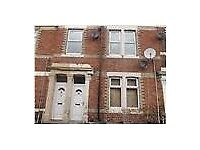 2 Bedroom flat, Immaculate cond. Ripon Str. Gateshead, DSS Welcome