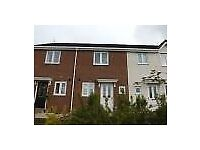 Spacious & High Standard Two Bedroom House to Let in Langley Park, Durham