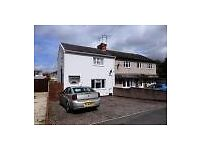 2 bedroom spacious semi detached house with parking to rent