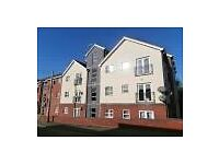 lovely 2 bed modern apartment in Great Bridge